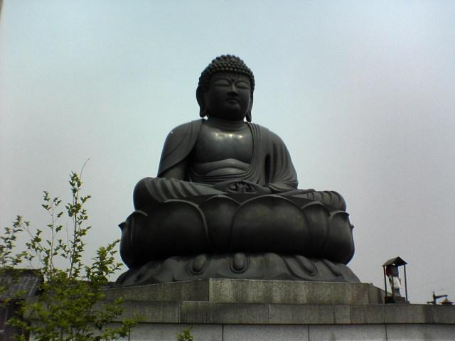 200656__1